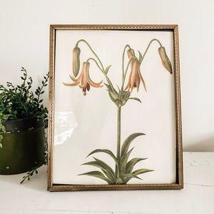 Vintage floral in frame